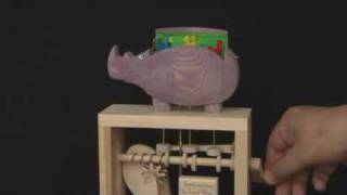 Purple Rhino Automata And Mechanical Toys Working Models Gift