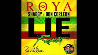 Roya lie ft. Shaggy (remix)