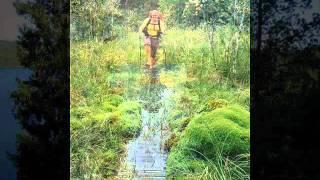 Walking the Path of the Pilgrims - www.naturetravels.co.uk