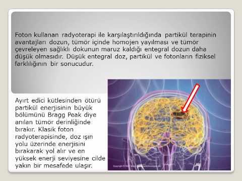 kanser de tedavi yöntemleri - Biyolog Ersin Ünalleylioğlu
