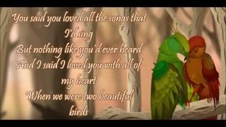 PASSENGER ft BIRDY- BEAUTIFUL BIRDS-LYRICS