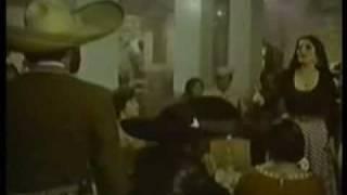 Mujeres Divinas-Visente Fernandez
