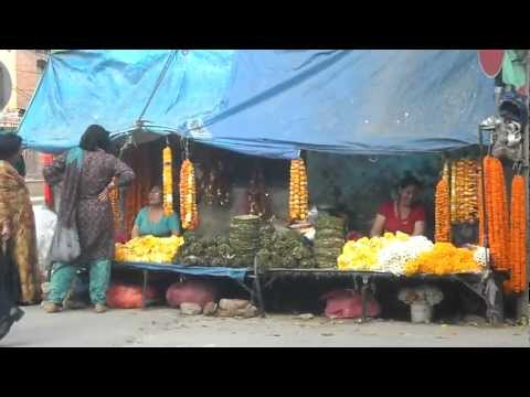 Naxsal Bhagabati, www.buddhanepaltrek.com