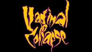 Vaginal Collapse - Forced Intercranial Rape (preview) width=
