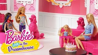 Happy Birthday Chelsea | Barbie LIVE! In the Dreamhouse | Barbie
