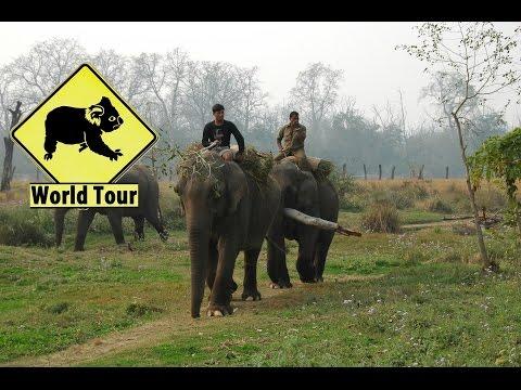 Voyage Tour du monde de 4 ans photos de la 1e année Maryse & Dany © Youtube