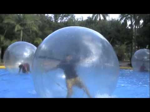 Playing in a Hamster Ball.m4v