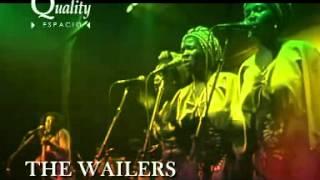 Spot Wailers Cordoba