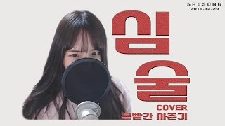 BJ새송 볼빨간사춘기 - 심술 cover