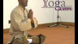 yoga vital®ayur yoga®-congreso internacional de yoga vital®4de5-paola ríos-jorge bidondo.avi