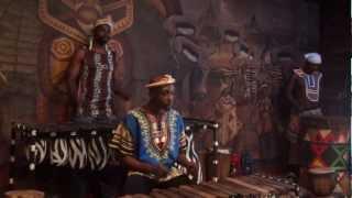 Musica Tribus Sudáfrica
