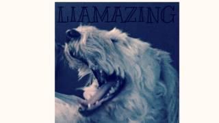 LIAMAZING - Enya Sample Rap Trap Hip Hop Instrumental Beat