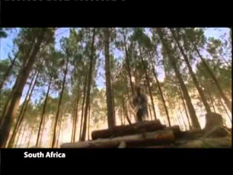 ROCS Travel South Africa promotional video