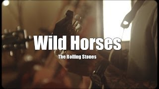 Joey Briggs - Wild Horses cover (The Rolling Stones)