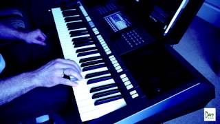 Lady in Red (cover by Daro) yamaha PSR s770