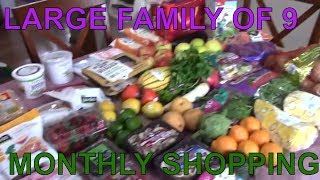 GROCERY HAUL ON A BUDGET | UNDER $100 GROCERY HAUL | THE