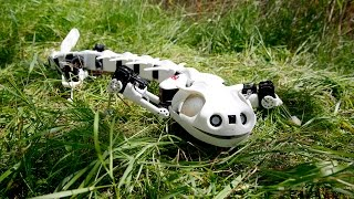 Realistic Salamander Robot Is Creepy But Useful