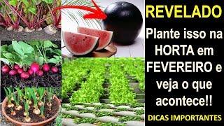 Plante isso na HORTA em FEVEREIRO e tenha o dobro de produção!!!