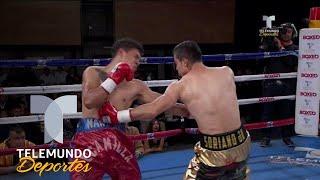 Espectacular KO de César Soriano deja en la lona a Martín Escamilla | Boxeo Telemundo