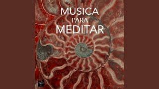 Verdad - Musica para visualizaciones