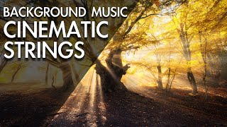Amazing & Beautiful Cinematic Background Music For Videos