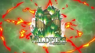 Wildfire 2017 - Meland x Hauken