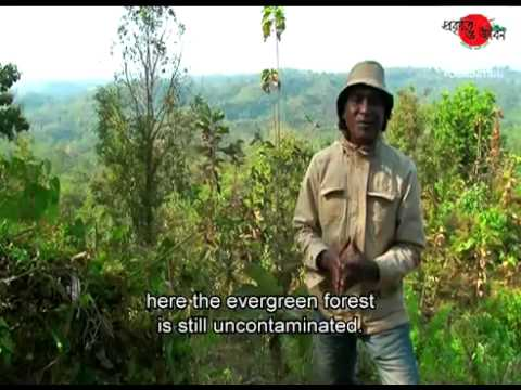 Travel Bangladesh   Discover Nature and Life 3A   travelbangladesh net