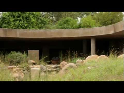 Sabi Sabi: Earth Lodge