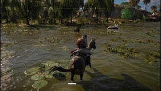 Assassin's Creed Origins Hippopotamus vs Crocodile