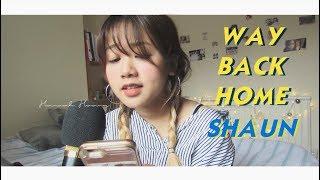 (SHAUN 숀) WAY BACK HOME - Vietnamese cover |Hannah Hoang (Lời Việt)