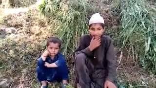Gojri songs