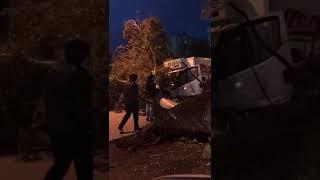 İzmir'de Ağaç Trafikteki Arabanın Üzerine Devirdi