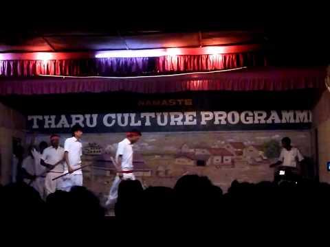 nepal dance tharu cultural program sauraha chitwan