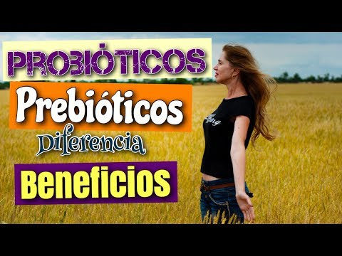 Probióticos y Prebióticos Beneficios - Suplementos o alimentos - Vídeo