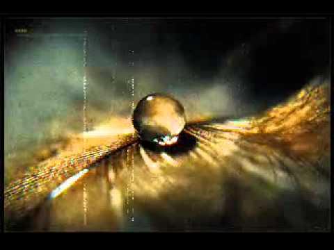 Bedirhan Gökçe - Aldırma / Ayhan İnal