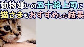 【かわいい猫】動物嫌いの五十路上司に猫さまをおすすめした結果