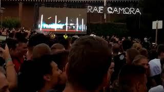 500 PS (Palmen aus Plastik 2 Köln) Raf Camora & Bonez MC