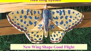 Butterfly 46 Small 90cm New Wing System : New Wing Shape :Very Good Flight