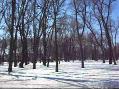 05.03.2011 Zaporizhzhya.Ukraine.wmv