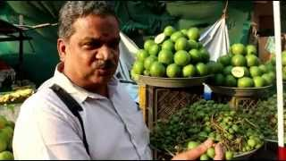 Season for 'Vadu' Mangoes