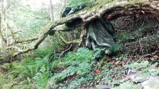 Bushcraft Shelter / Fast and easy Tarp Cover /  natural rain shelter.