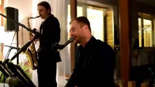 Fields of Gold - (cover by Honza Kuchař, Adam rovný - sax)