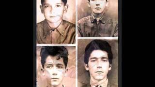 Raulzito e Os Panteras - Me Deixa Em Paz 1967