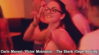 Carlo Marani, Victor Montsaint - The Shark (Gege Bootleg) Official Video