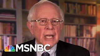 Bernie Sanders Joins Long List Of 2020 Democratic Candidates   Velshi & Ruhle   MSNBC
