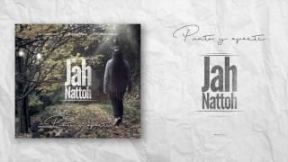 Jah Nattoh - Más de una década - feat DjKeal (Caribe Blues Riddim)