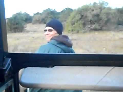 "Sitting in the ""tracker seat"" while giraffe walks in the di"