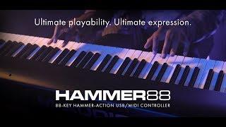 Introducing M-Audio Hammer 88 (feat. Joel Holmes)
