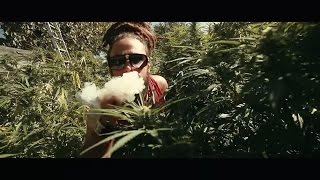 Ilements - Ganja Have To Burn (Official Music Video)