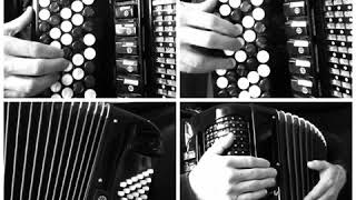 WAKE ME UP (Avicii) accordion cover